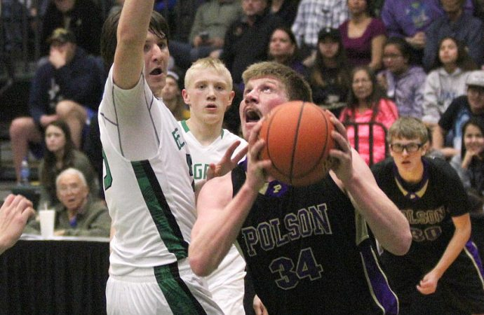 Fierce Panther comeback falls short in consolation