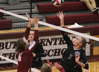 Broncs start fast, sweep past Maroons