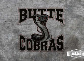 Quake edge Cobras again