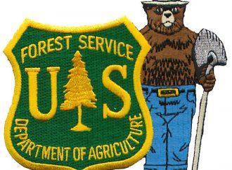 Pile Burning Begins Near Butte
