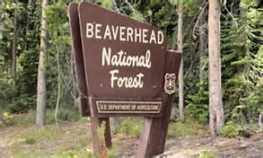 Camping Season Begins Memorial Day Weekend on the Beaverhead-Deerlodge NF