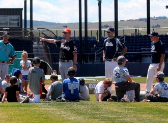 Young baseball players learn from top coaches