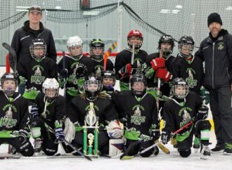 Copper City Kings place second at State 10U B