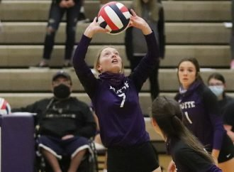 Spartans take down Bulldogs in three sets