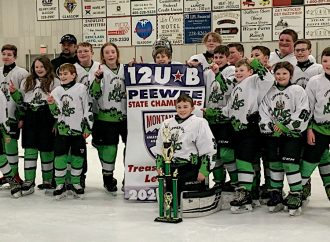 Copper City Kings capture Pee Wee B state title