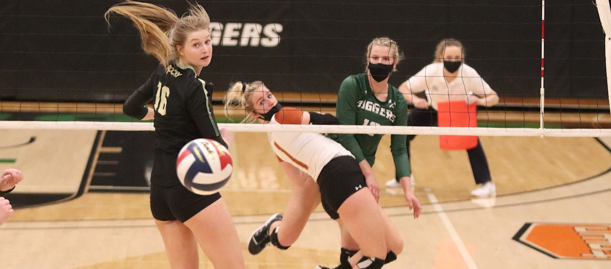 Bears battle past Diggers for four-set victory