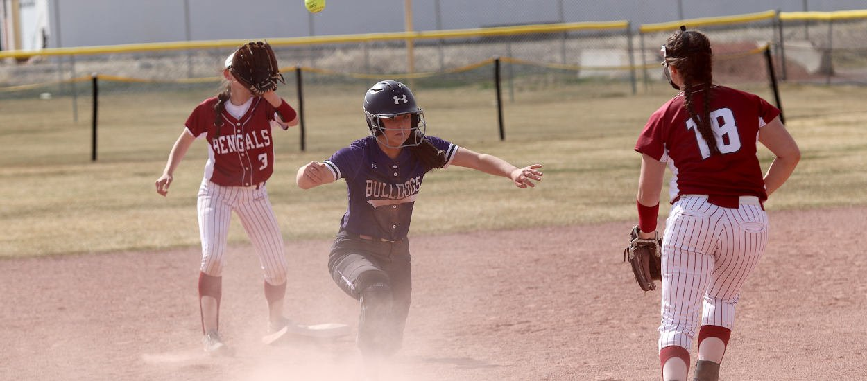 Bengals battle past Dogs for Western AA sweep