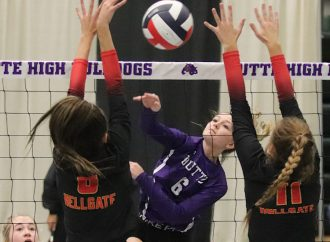 Bulldogs sweep Knights for Senior Night victory